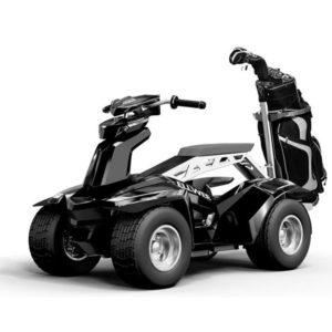 Golf Cart Ellwee